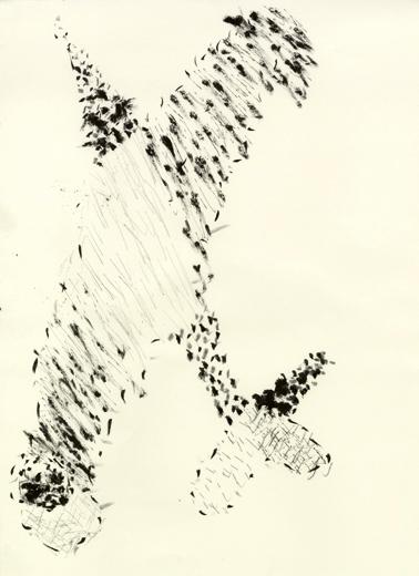 fly_3.jpg