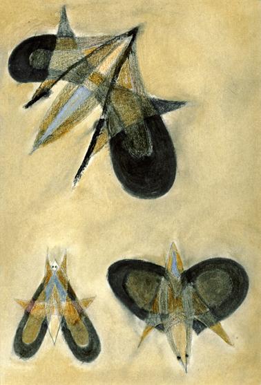 three_moth.jpg